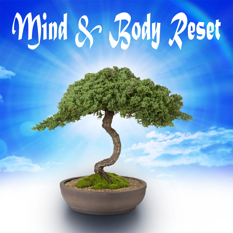Mind Body Reset MP3